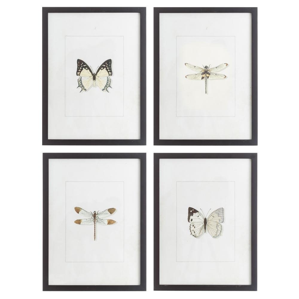 Cuadro impresión blanco y negro con dibujo de libelula y marco madera