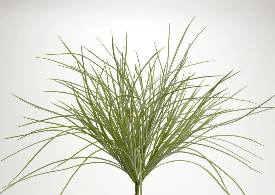 Pincho de hierba verde mate 51 cm altura for Hierba jardin